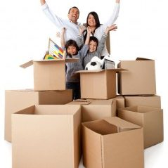 about national removals, tips for summer move